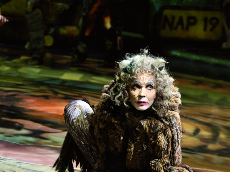 'Cats (Tour 2011-13)' (Hamburg)  © Thommy Mardo