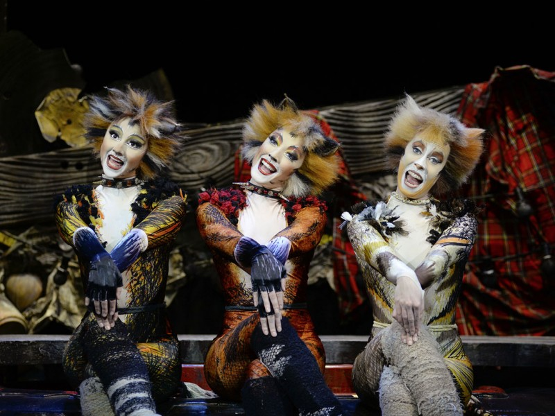 'Cats' (Wien)  © Alessandro Pinna (London Palladium)
