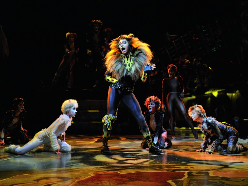 'Cats (Tour 2011-13)' (Hamburg)  © Nilz Böhme