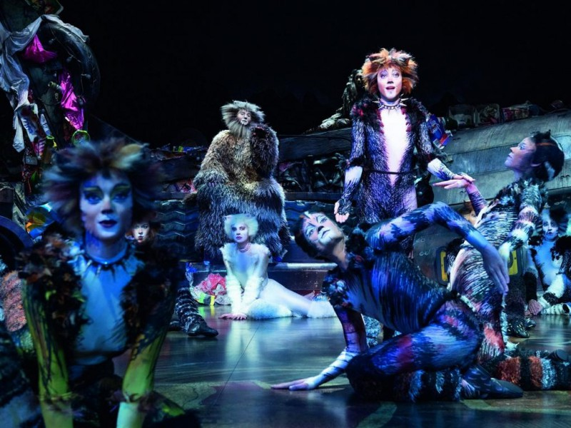 Rory Six (Alt Deuteronimus), Ensemble  in 'Cats' (Wien)  © Deen van Meer